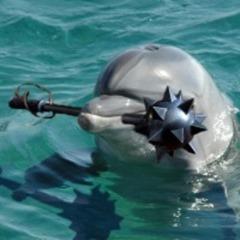 delfin-s-bulavoi