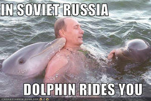 putin-i-delfiny